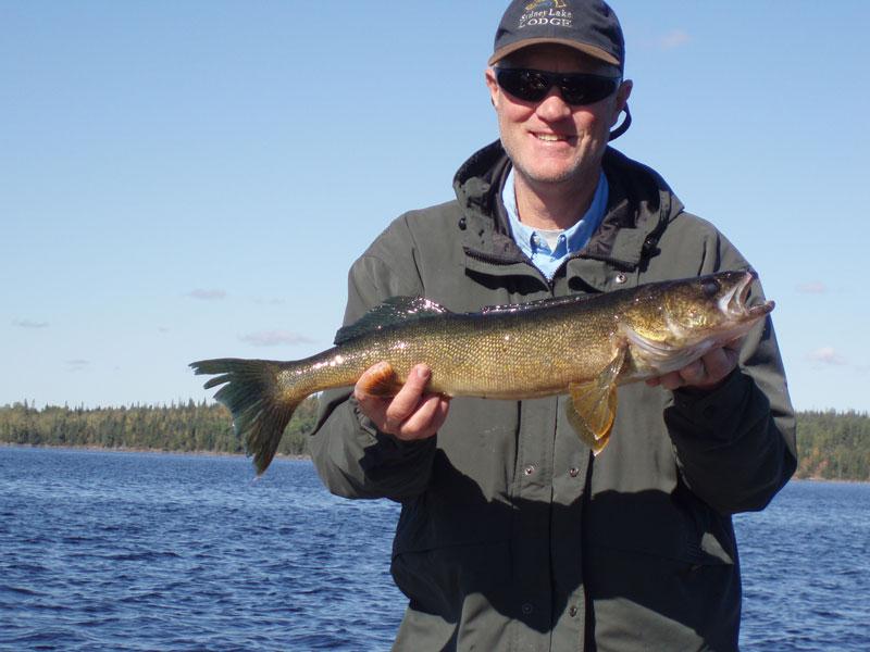 Canada walleye fishing trips fly in trophy walleye for Fall walleye fishing