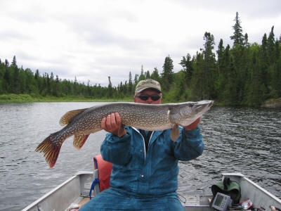 42 Inch Northern Pike