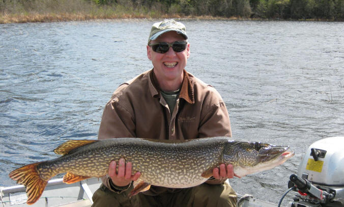 Northern pike fish for Northern pike fish